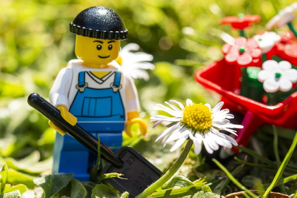 Little helper with the gardening today by bizziebeeme