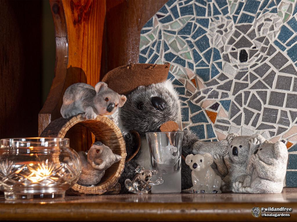 meet the fockers by koalagardens