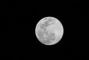 7th Apr 2020 - Full moon