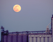 7th Apr 2020 - Pink Moon Over the Mississippi