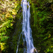 Olympic National Park Waterfall