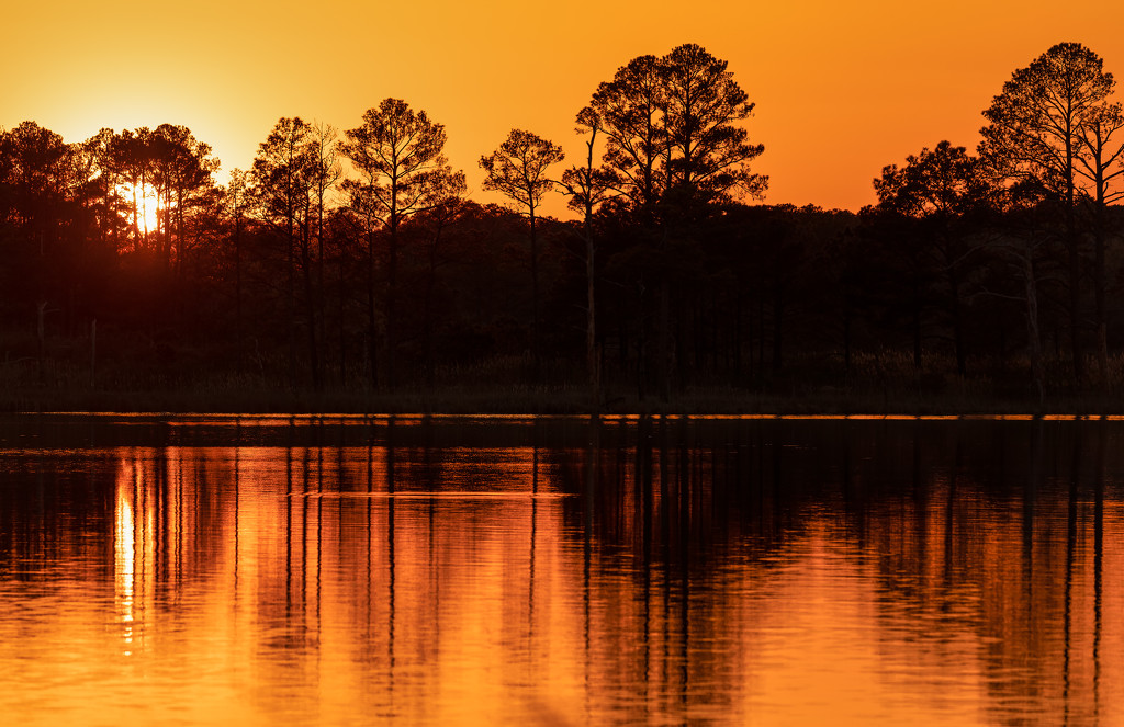Sunset at Blackwater by shesnapped