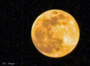 8th Apr 2020 - The Pink Moon April 2020