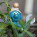 Smurf in the garden