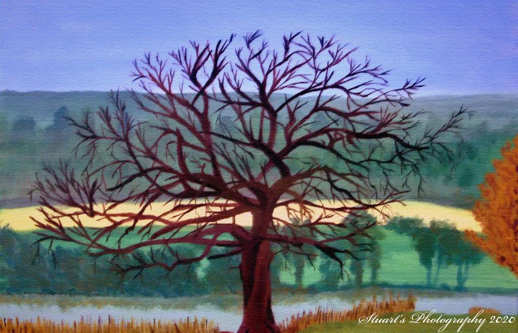 Tree (painting) by stuart46
