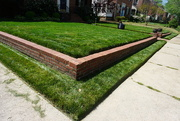 10th Apr 2020 - Never Have Lawns Looked So Good