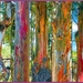 5 Rainbow Gum trees  by ludwigsdiana