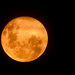 April supermoon by mv_wolfie