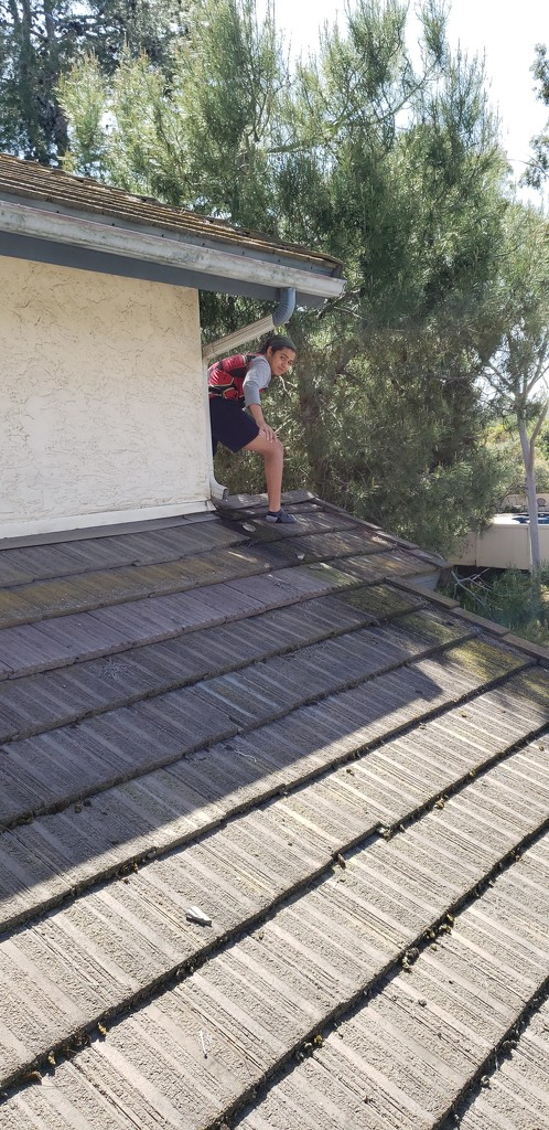 Day 19 at home, Ryan on the Roof by mariaostrowski