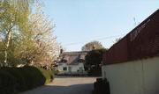 11th Apr 2020 - Cottage