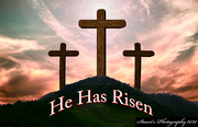 12th Apr 2020 - He has Risen