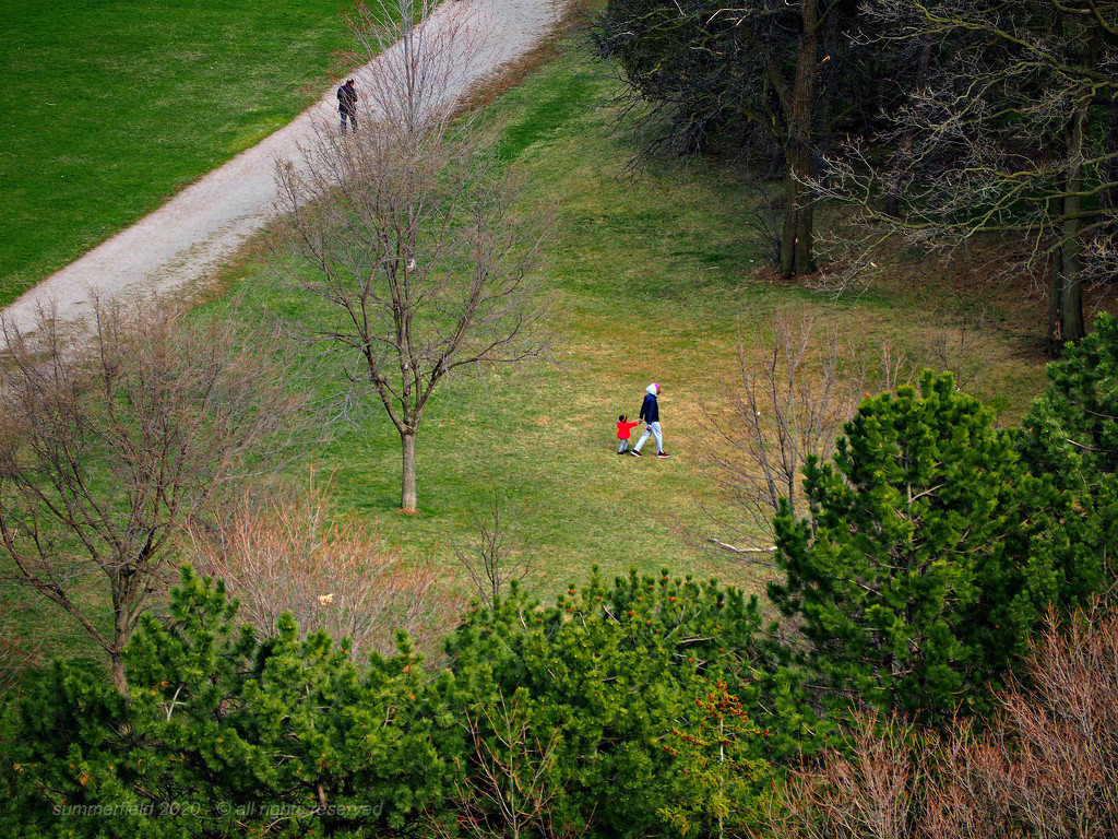 a family at the walking trail by summerfield