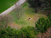 12th Apr 2020 - a family at the walking trail