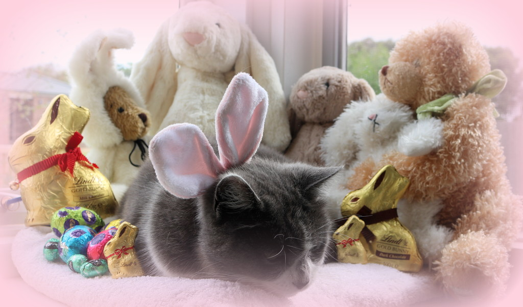 It's been a hard day for the bunnies by gilbertwood