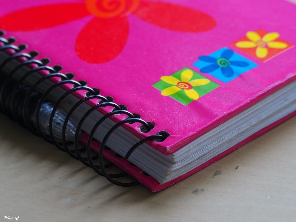 Notebook by monicac