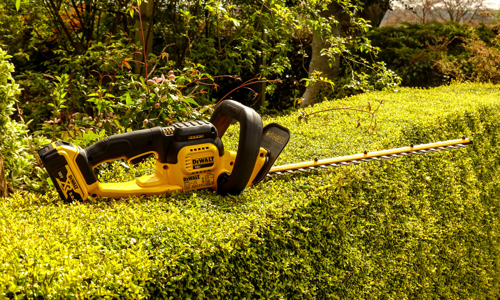 Hedge Trimmer by tonygig