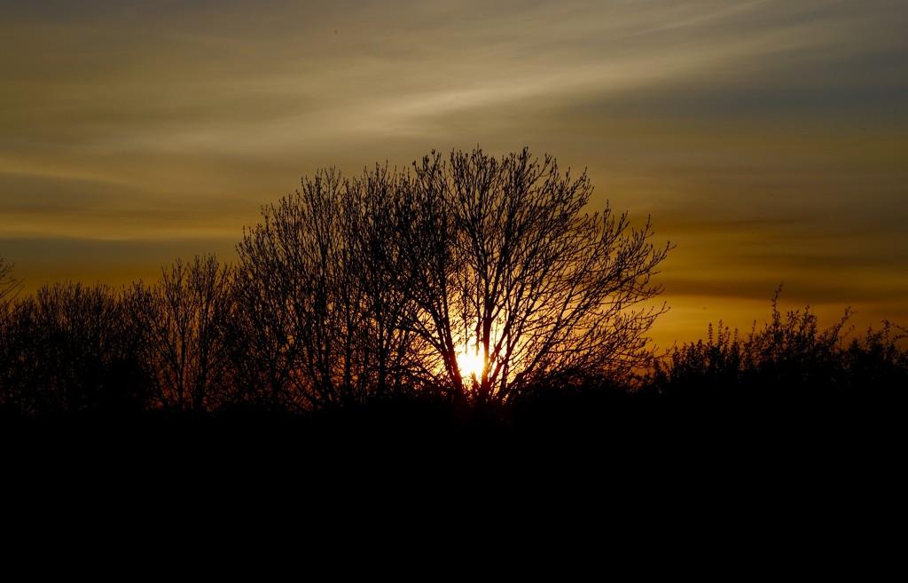 Sunset by carole_sandford