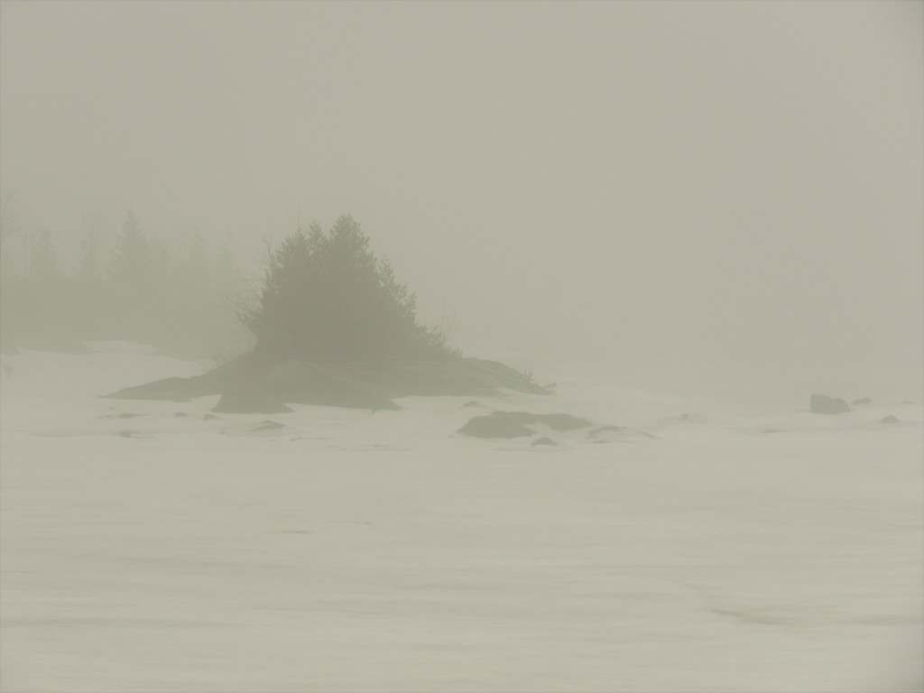 The Lake in Fog by radiogirl
