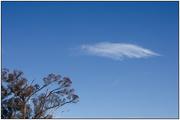 6th Apr 2020 - Cloudscape #6