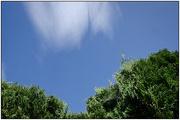 9th Apr 2020 - Cloudscape #9