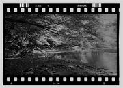 16th Apr 2020 - White Clay Creek