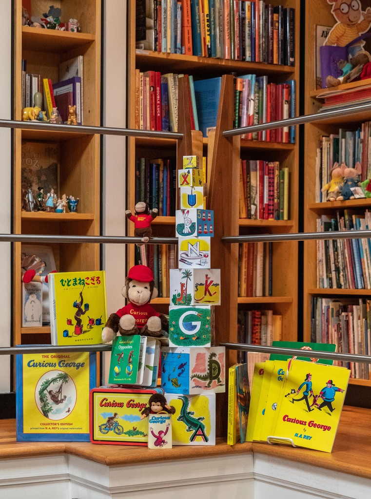 Home LIbrary 6/30: Curious George Corner by jyokota