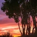 Sunrise by ludwigsdiana