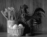19th Feb 2020 - The Chicken and Eggs