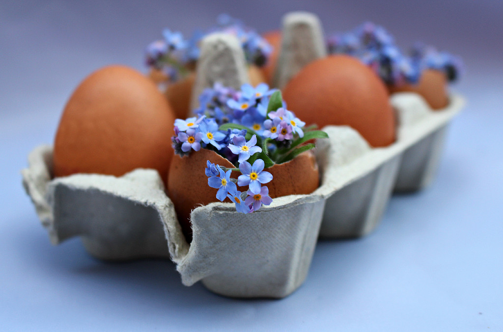 Eggs For Easter.  by wendyfrost
