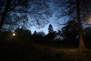 14th Apr 2020 - The Park At Night