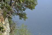 17th Apr 2020 - cliff