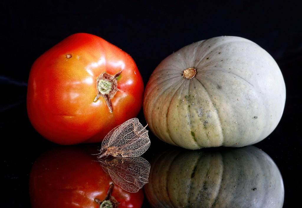 Harvest time by kiwinanna