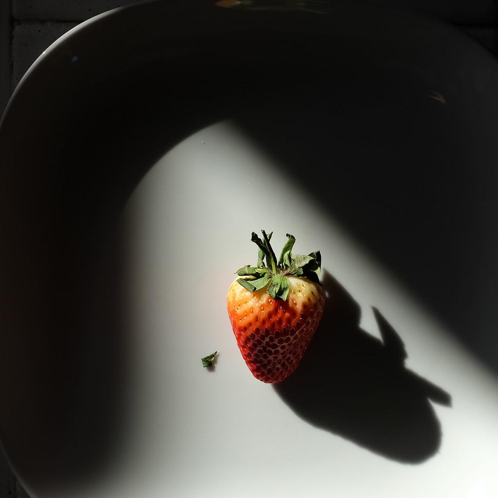 Diet plan by rexcomu