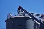 20th Apr 2020 - Top of the grain elevator