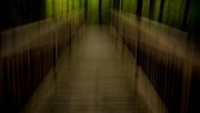 20th Apr 2020 - The Bridge in the Woods ICM