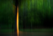 19th Apr 2020 - The Golden Hour ICM