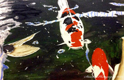 22nd Apr 2020 - Koi Carp (painting)