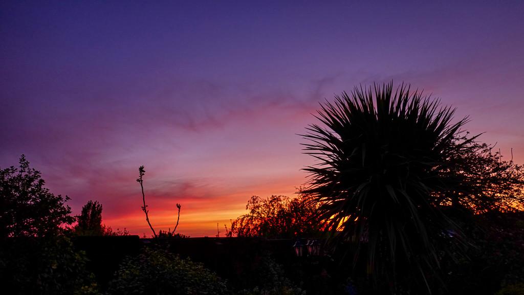 This Mornings Sky by tonygig