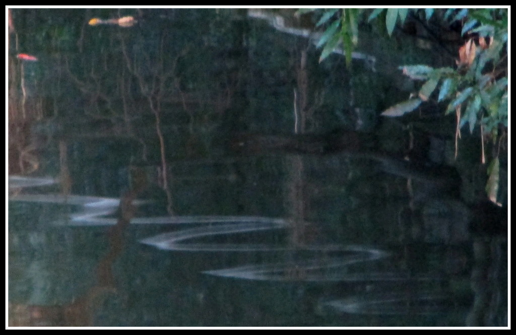 This snake like  riple in the river is a reflection of a white pole reaching out over the river by 777margo