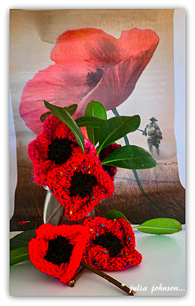 Knitted Poppies... by julzmaioro