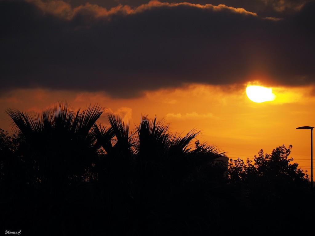Sunrise by monicac