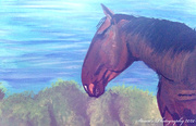25th Apr 2020 - Horse (painting)