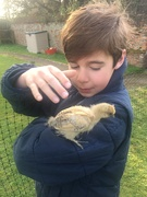 25th Apr 2020 - With a Chick