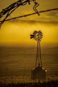 26th Apr 2020 - Morning Windmill