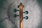 28th Apr 2020 - Violincello