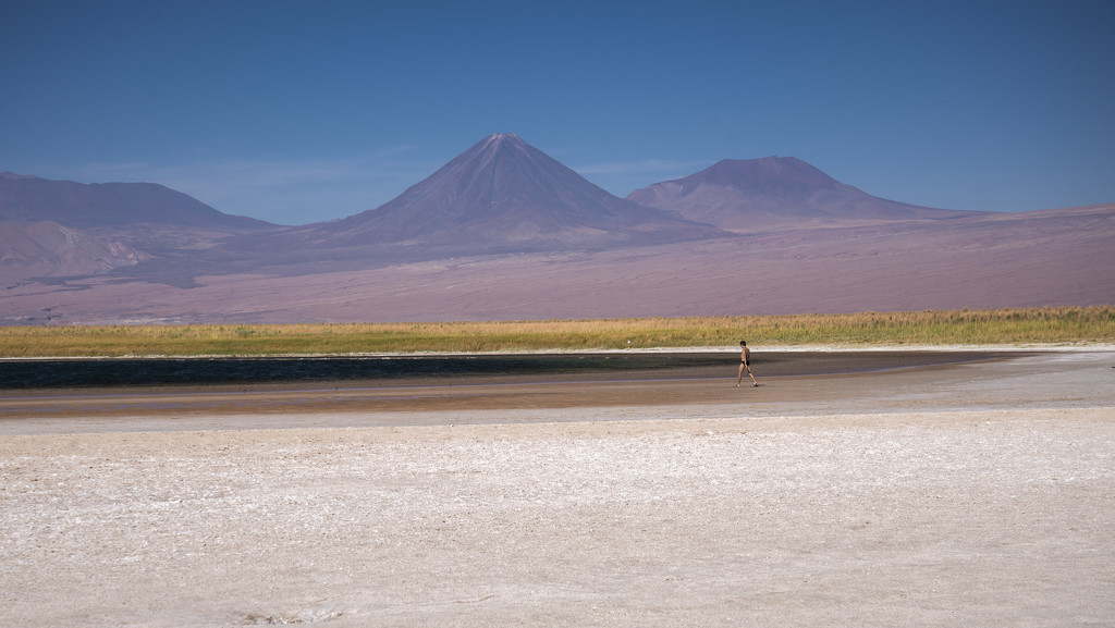 Salt Flats in the Atacama Desert by taffy