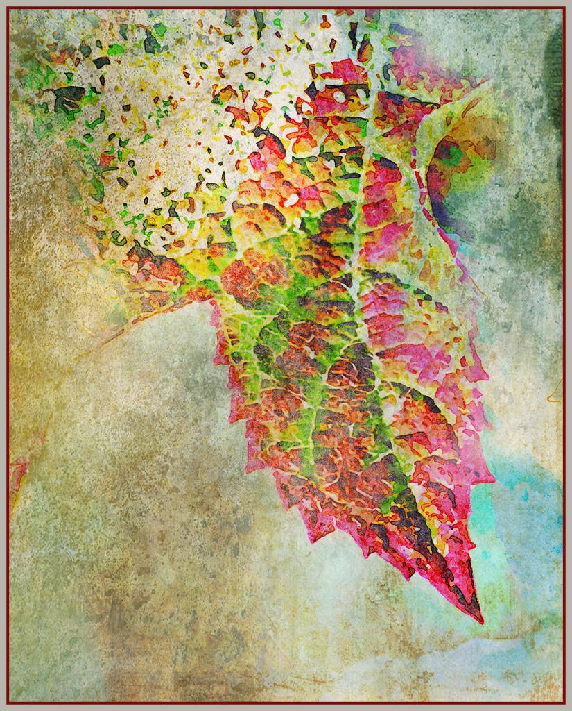 Leaf Study by ethelperry