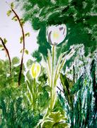 29th Apr 2020 - Tulips in oils