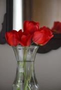 29th Apr 2020 - Tulip Bouquet
