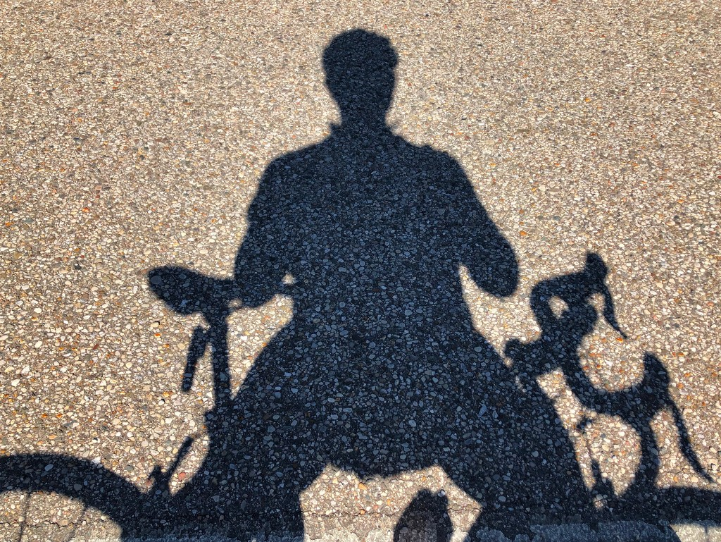 Shadow on the Pavement by andewein